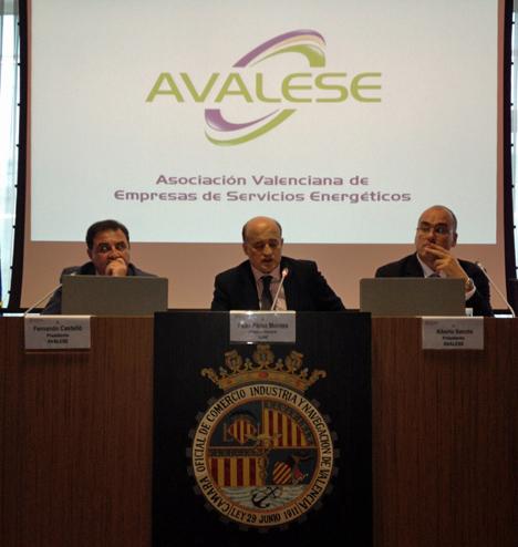 Presentación de VALESE con la presencia del Director General del IDAE, Fidel Pérez Montes y el presidente de AVALESE, Alberto de Sanctis