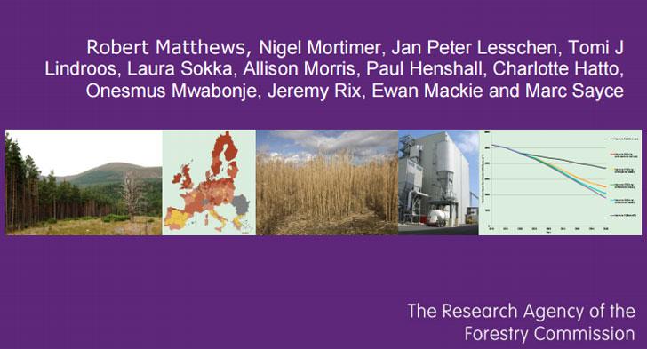 informe biomasa 1