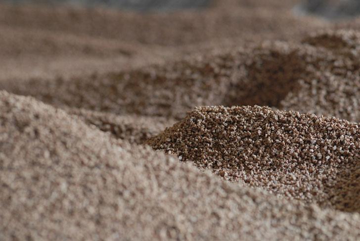 informe biomasa 5