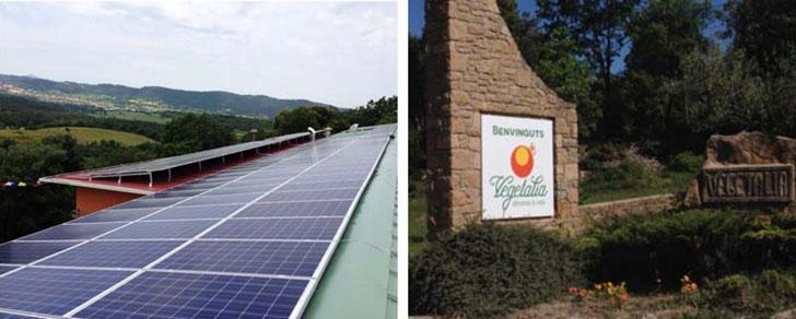 Sud Renovables pone en marcha una instalación solar fotovoltaica de autoconsumo en la empresa Vegetalia. Instalación fotovoltaica.