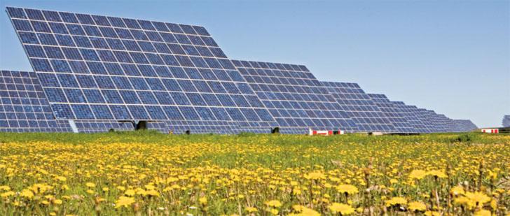 Informe Anual UNEF 2016. El sector fotovoltaico en 2015. Parque fotovoltaico conectado a red.