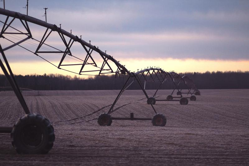 Agricultura de regadío.