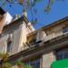 El edificio de Teléfonica de Alicante tendrá una pérgola fotovoltaica para autoconsumo