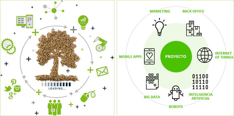 Infografías que muestran las áreas de aplicación de los proyectos que se pueden presentar al concurso Innova Biomasa de Biomasa Forestal.