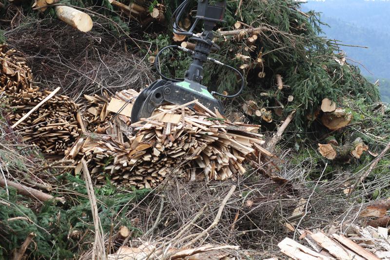Extracción de restos forestales para aprovechamiento como biomasa.