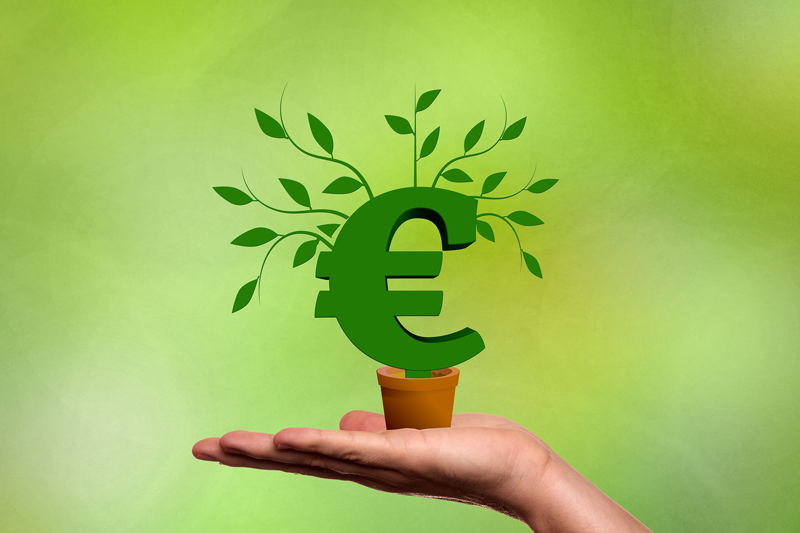 Dinero, inversión, brotes verdes.