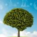 Protocolo para financiar la mejora energética de los centros educativos andaluces
