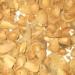 El Proyecto Biomasstep desarrollará una tecnología para medir la calidad de la biomasa