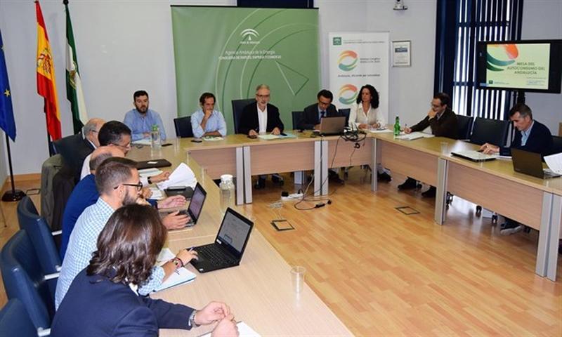 Reunión de integrantes de la Mesa para el Autoconsumo en Andalucía.