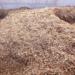 España tiene biomasa suficiente para abastecer su demanda energética durante 28 días