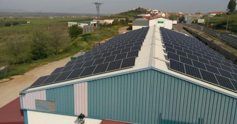 Placas fotovoltaicas sobre la cubierta de la nave de una cooperativa agrícola ganadera en Castuera, Badajoz.