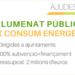 Ivace Energía impulsa la renovación del alumbrado público en 19 municipios de la Comunidad Valenciana