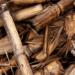 Extremadura destinará 12,5 millones a incentivar la fabricación de biocombustibles sólidos y carbón vegetal