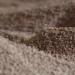 La empresa jienense Peláez Renovables se hace con la certificación Biomasud para el hueso de aceituna