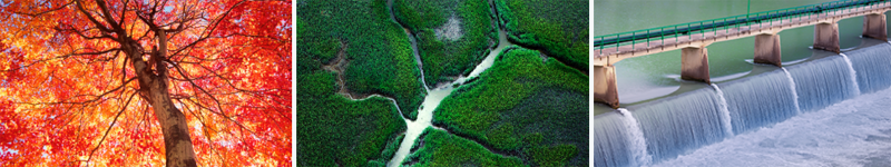 CDP vuelve a reconocer a Naturgy como líder mundial por su acción frente al cambio climático