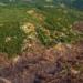 La CE aprueba un plan de 320 millones para apoyar instalaciones de biomasa cerca de los bosques en riesgo de incendios en Portugal