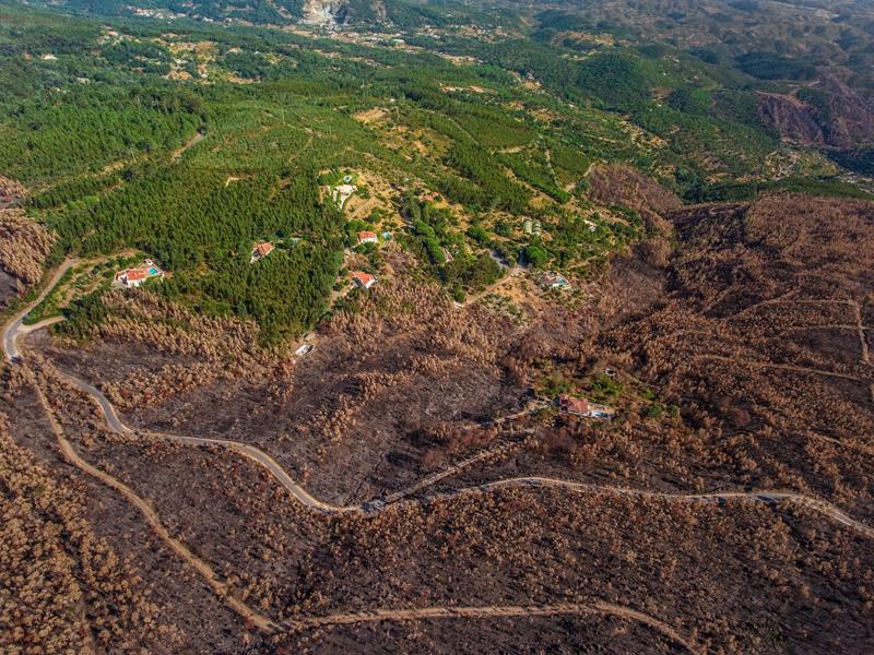 La CE aprueba un plan de 320 millones para apoyar instalaciones de energía de biomasa cerca de los bosques en riesgo de incendios en Portugal