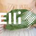 El Grupo Volkswagen crea una nueva compañía energética bajo el nombre de Elli