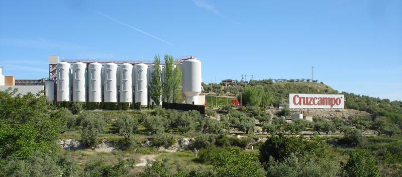Está previsto que la planta de biomasa se inaugure este mismo año.