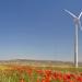 Acciona se hace con un contrato para suministrar energía renovable a Telefónica durante todo el ejercicio