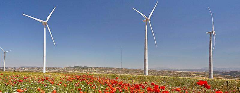 De esta forma, Telefónica cumple uno de los puntos esenciales de su Plan de Energía Renovable, en el que se compromete a comprar fundamentalmente energía renovable con garantía de origen nacional.