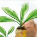 La Plataforma EnerInvest publica la segunda edición de la Guía para la Financiación de Proyectos de Energía Sostenible