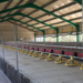 Granja avícola de Jaén firma con TSO un contrato PPA con autoconsumo fotovoltaico