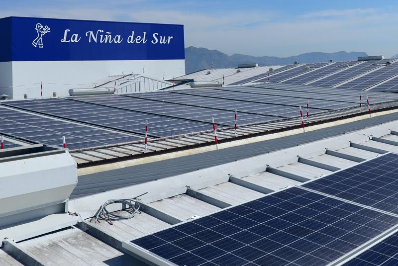 Instalación fotovoltaica de la empresa alimentaria La Niña del Sur.