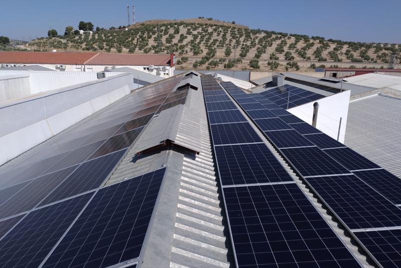 Instalación fotovoltaica sobre la cubierta de la empres Embutidos Toledano, llevada a cabo por Enchufe Solar.