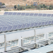 Mercalicante se abastece exclusivamente con energía eléctrica procedente de fuentes renovables