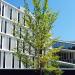 La gestión sostenible de las instalaciones de climatización del Ayuntamiento de Vitoria-Gasteiz se adjudica a una ESE