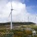 Las oficinas de ACNUR en España serán suministradas exclusivamente con electricidad de origen 100% renovable