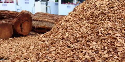 La bioenergía muestra en Expobiomasa 2019 su valor en la lucha contra la despoblación rural y el cambio climático