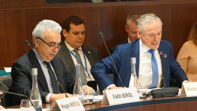 Para esta primera reunión, la AIE ha presentado los resultados de la encuesta realizada en una población de 800 personas en 80 países.
