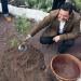 Arona se convierte en uno de los primeros ayuntamientos canarios en comprar energía de origen 100% renovable