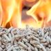 Programa de ayudas a inversiones en instalaciones de aprovechamiento energético de la biomasa en País Vasco