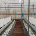 Investigación para mejorar la producción en invernaderos con sistemas pasivos de calefacción y refrigeración