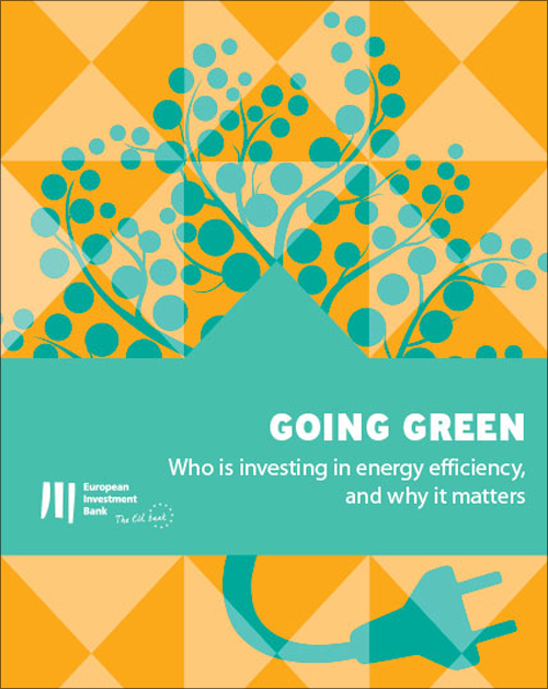 """Informe del EIB_ Going Green. Who is investing in energy efficiency, and why it matters""""."""