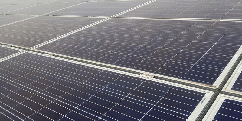 Comunidades de vecinos y vecinas de Cádiz comienzan a producir electricidad renovable compartida