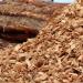 Convocatoria de subvenciones para instalaciones térmicas con biomasa local en Islas Baleares