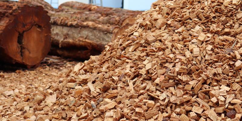 Convocatoria de ayudas de 300.000 euros para el fomento de la biomasa en Islas Baleares.