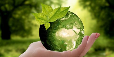 Lanzan un seguro de eficiencia energética que garantiza los ahorros prometidos por las ESE