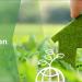 Reducción del consumo energético con las soluciones de Bosch Termotecnia