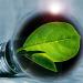 Suministro de energía renovable para los edificios públicos de la Junta de Castilla-La Mancha