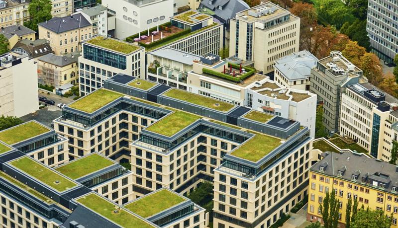 Edificios con azoteas verdes