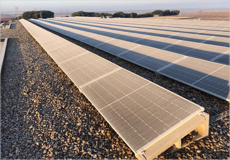 Paneles fotovoltaicos en Beronia Rueda