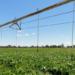 Andalucía destinará 8 millones para la mejora energética de regadíos y explotaciones agropecuarias