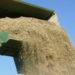Andalucía reabre la línea de ayudas Pyme Sostenible, que incentiva el uso energético de la biomasa