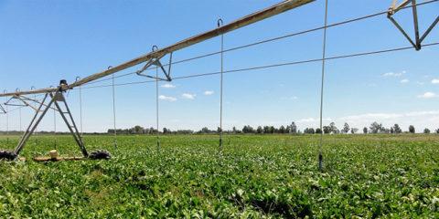 Andalucía convoca ayudas para mejorar la eficiencia energética de explotaciones agropecuarias
