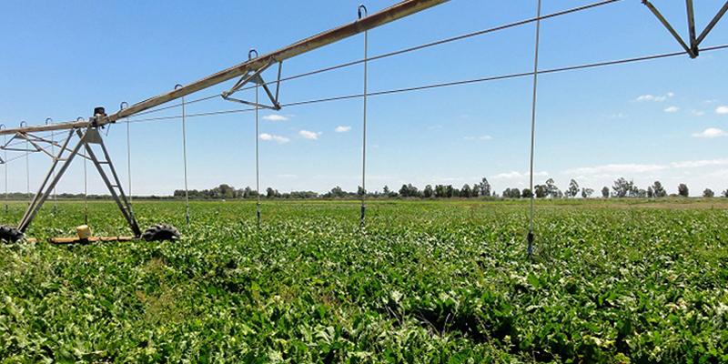 La Junta publica la convocatoria de ayudas para la mejora energética de explotaciones agropecuarias